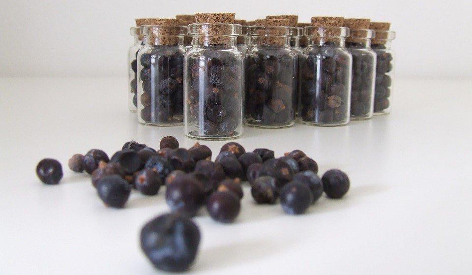 Enbär – Genever och Gin är resultatet av en lång utveckling av att krydda alkohol.